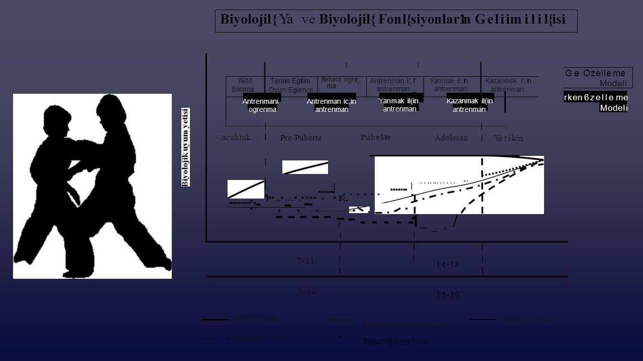 Biyolojil{ Ya ve Biyolojil{Fonl{siyonlar1n Geliim ilil{isi Ge Ozelleme Modeli rken 6zelle me ModeIi I I Pre-Puberte <;ocukluk I Pube1-te Adolesan Yeti