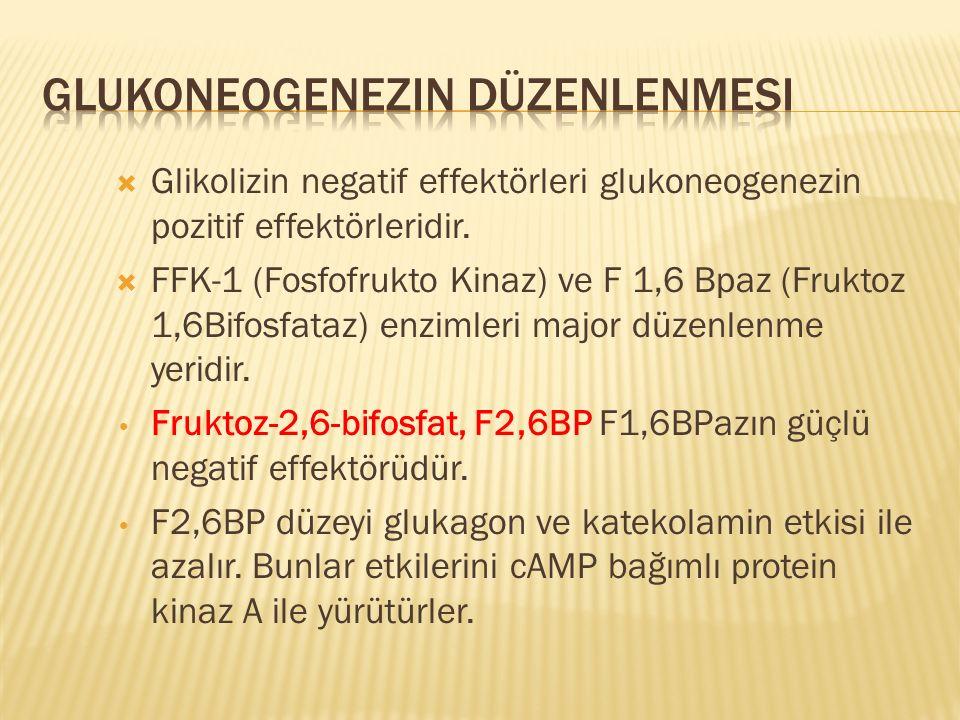  Glikolizin negatif effektörleri glukoneogenezin pozitif effektörleridir.  FFK-1 (Fosfofrukto Kinaz) ve F 1,6 Bpaz (Fruktoz 1,6Bifosfataz) enzimleri