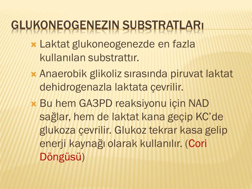  Laktat glukoneogenezde en fazla kullanılan substrattır.