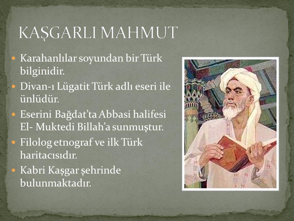 Karahanlılar soyundan bir Türk bilginidir. Divan-ı Lügatit Türk adlı eseri ile ünlüdür. Eserini Bağdat'ta Abbasi halifesi El- Muktedi Billah'a sunmuşt