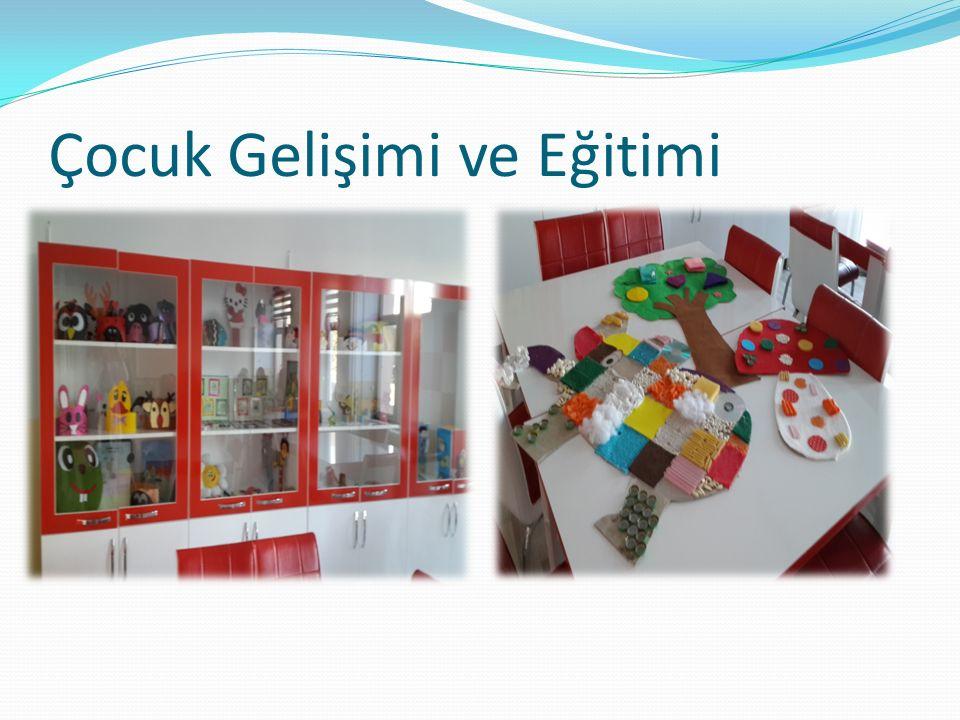Çocuk Gelişimi ve Eğitimi