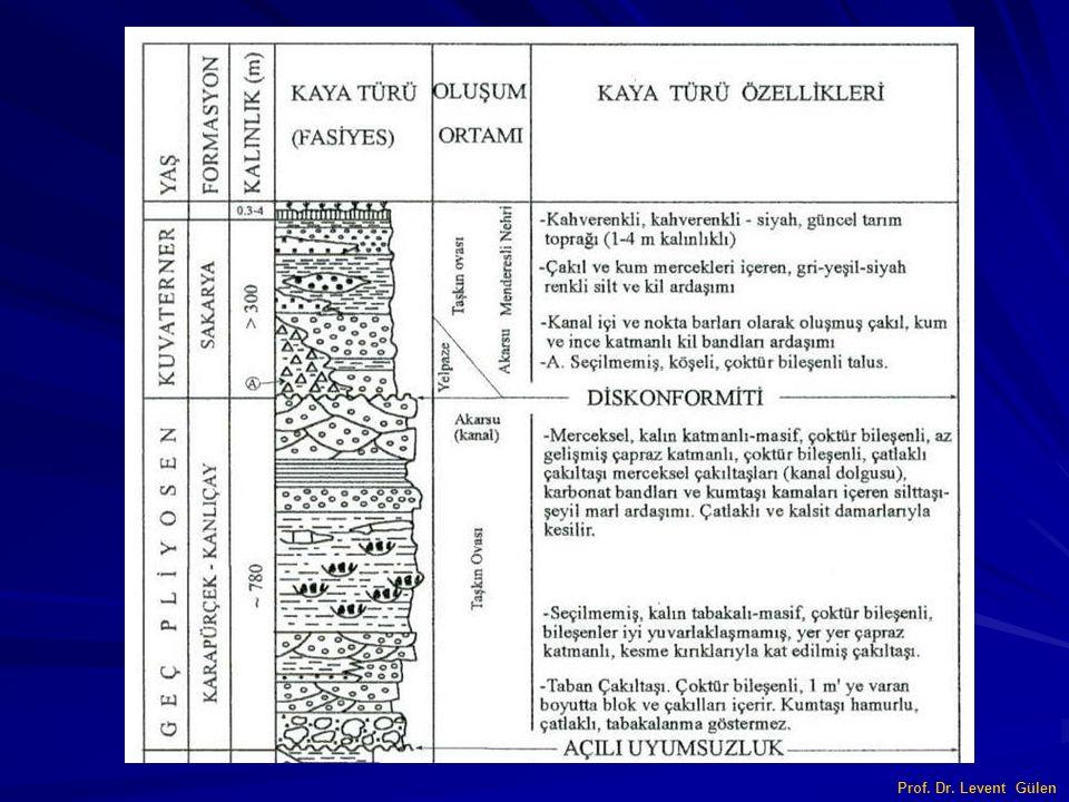 Prof. Dr. Levent Gülen