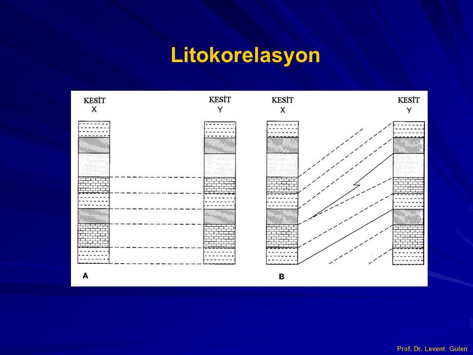 Prof. Dr. Levent Gülen Litokorelasyon
