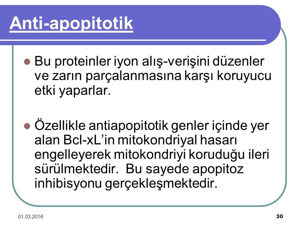 01.03.2016 30 Anti-apopitotik Bu proteinler iyon alış-verişini düzenler ve zarın parçalanmasına karşı koruyucu etki yaparlar. Özellikle antiapopitotik