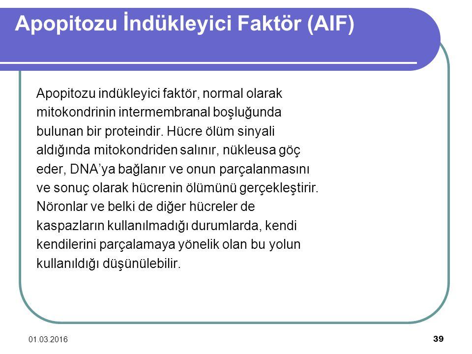 Apopitozu İndükleyici Faktör (AIF) Apopitozu indükleyici faktör, normal olarak mitokondrinin intermembranal boşluğunda bulunan bir proteindir. Hücre ö