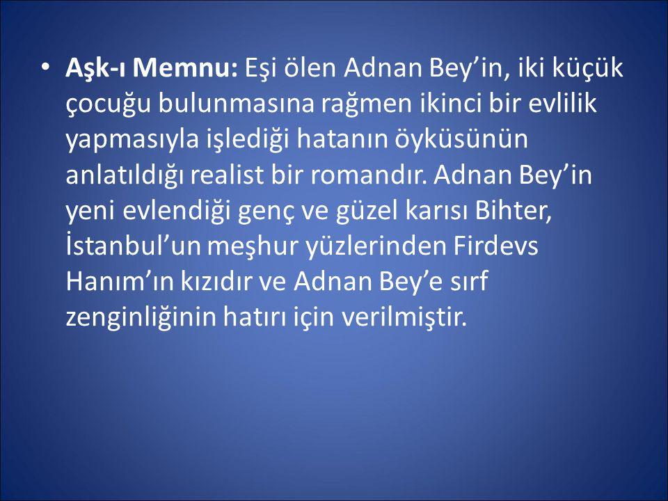 Aşk-ı Memnu: Eşi ölen Adnan Bey'in, iki küçük çocuğu bulunmasına rağmen ikinci bir evlilik yapmasıyla işlediği hatanın öyküsünün anlatıldığı realist b