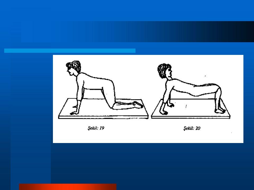 8- Cephe duruşu: Bank duruşunda bacaklar arkaya gergin uzatılarak ayak uçları yere dayanır.