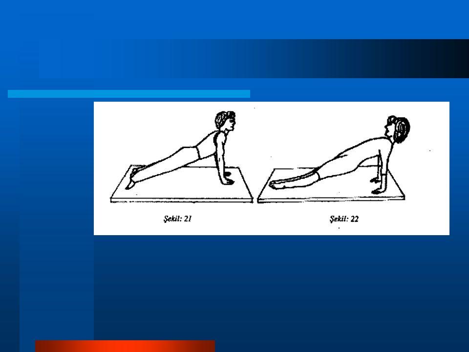 Yan cephe duruşu: Cephe durumunun yan olarak tek kol ve tek ayağın dış yüzüne dayanılarak yapılmasıdır.