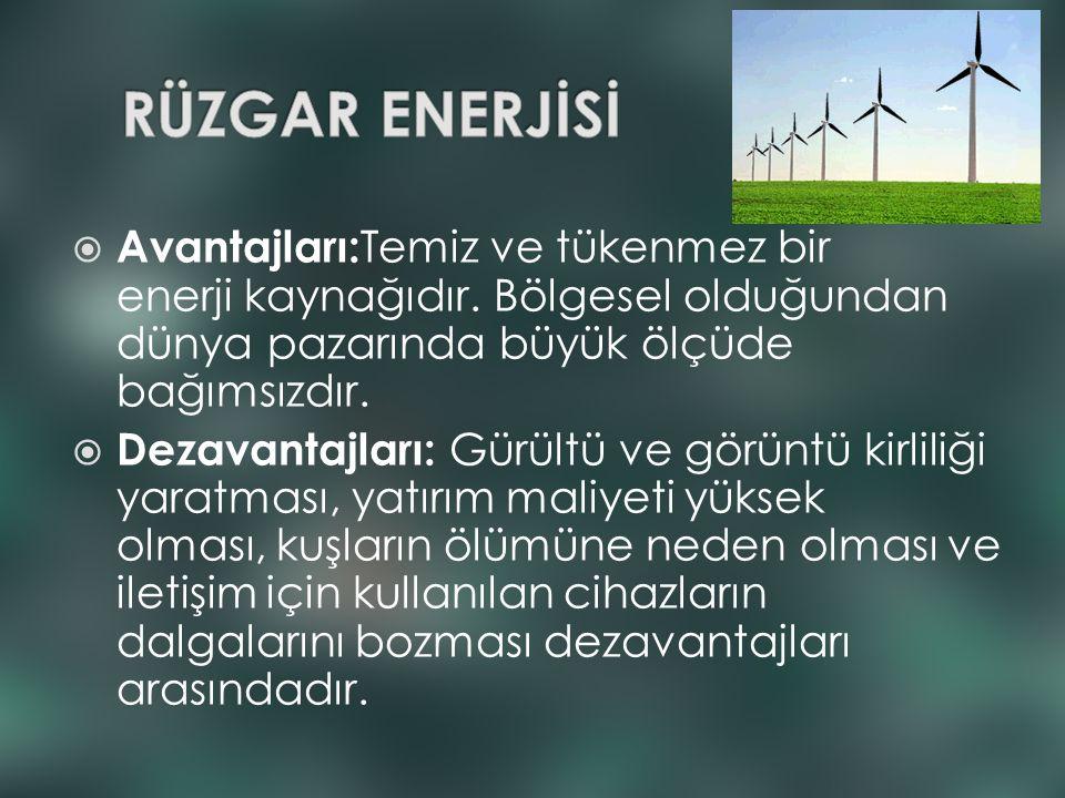  Avantajları: Temiz ve tükenmez bir enerji kaynağıdır. Bölgesel olduğundan dünya pazarında büyük ölçüde bağımsızdır.  Dezavantajları: Gürültü ve gör