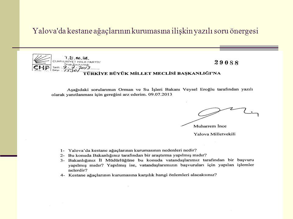 Yalova'da kestane ağaçlarının kurumasına ilişkin yazılı soru önergesi