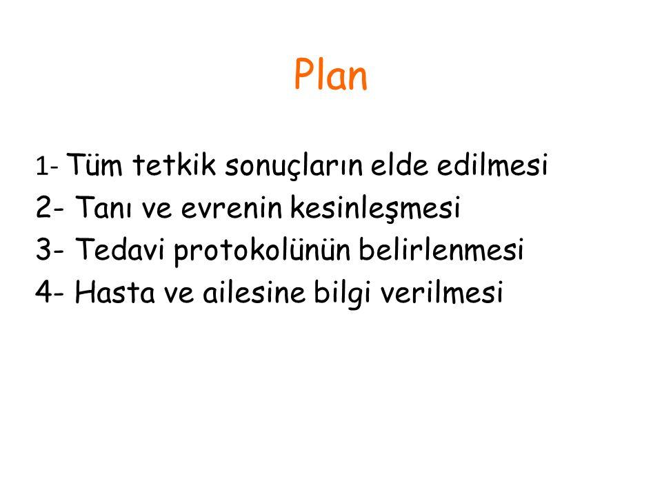 Plan 1- Tüm tetkik sonuçların elde edilmesi 2- Tanı ve evrenin kesinleşmesi 3- Tedavi protokolünün belirlenmesi 4- Hasta ve ailesine bilgi verilmesi