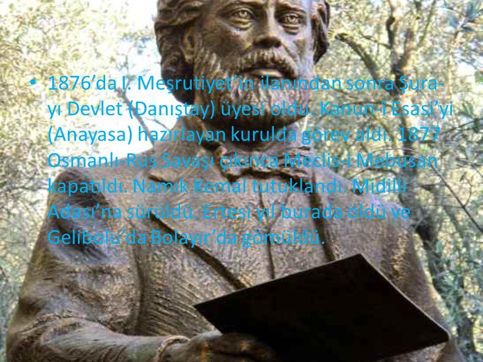 1876'da I. Meşrutiyet'in ilanından sonra Şura- yı Devlet (Danıştay) üyesi oldu. Kanun-î Esasi'yi (Anayasa) hazırlayan kurulda görev aldı. 1877 Osmanlı