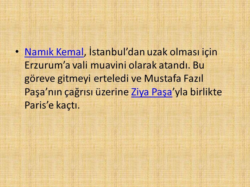 Namık Kemal, İstanbul'dan uzak olması için Erzurum'a vali muavini olarak atandı. Bu göreve gitmeyi erteledi ve Mustafa Fazıl Paşa'nın çağrısı üzerine