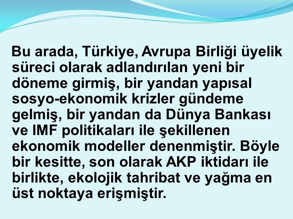 Bu arada, Türkiye, Avrupa Birliği üyelik süreci olarak adlandırılan yeni bir döneme girmiş, bir yandan yapısal sosyo-ekonomik krizler gündeme gelmiş, bir yandan da Dünya Bankası ve IMF politikaları ile şekillenen ekonomik modeller denenmiştir.