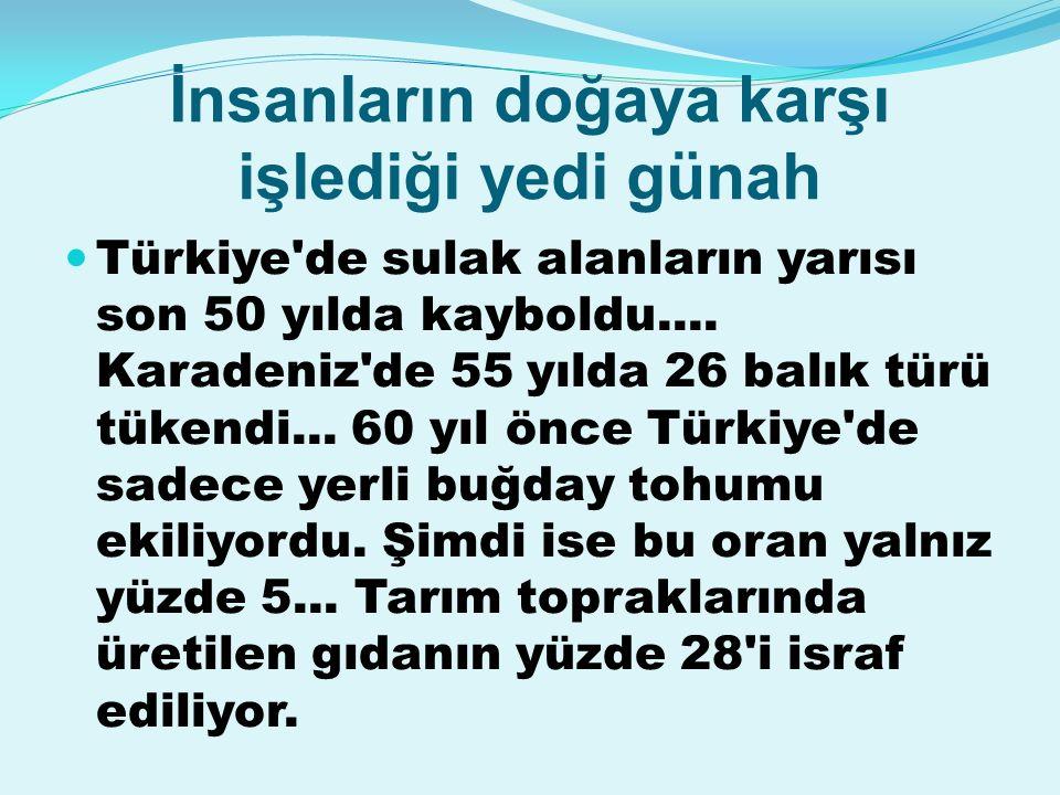 İnsanların doğaya karşı işlediği yedi günah Türkiye de sulak alanların yarısı son 50 yılda kayboldu....