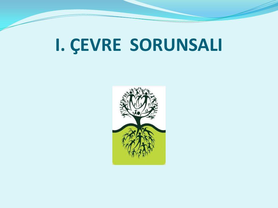 I. ÇEVRE SORUNSALI