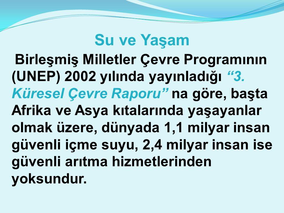 Su ve Yaşam Birleşmiş Milletler Çevre Programının (UNEP) 2002 yılında yayınladığı 3.