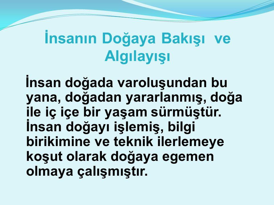 Türkiye'de çevre alanında 1980'ler boyunca yaşanan ve halen de süren kurumsal ve politik arayışların, 1990'ların ikinci yarsında yerini cılız korumacılığa bıraktığını söylemek mümkündür.