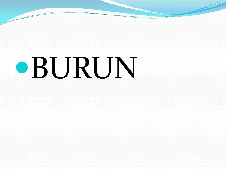BURNUMUZ