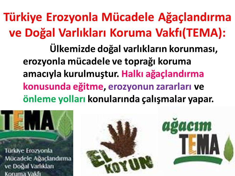 Türkiye Erozyonla Mücadele Ağaçlandırma ve Doğal Varlıkları Koruma Vakfı(TEMA): Ülkemizde doğal varlıkların korunması, erozyonla mücadele ve toprağı koruma amacıyla kurulmuştur.