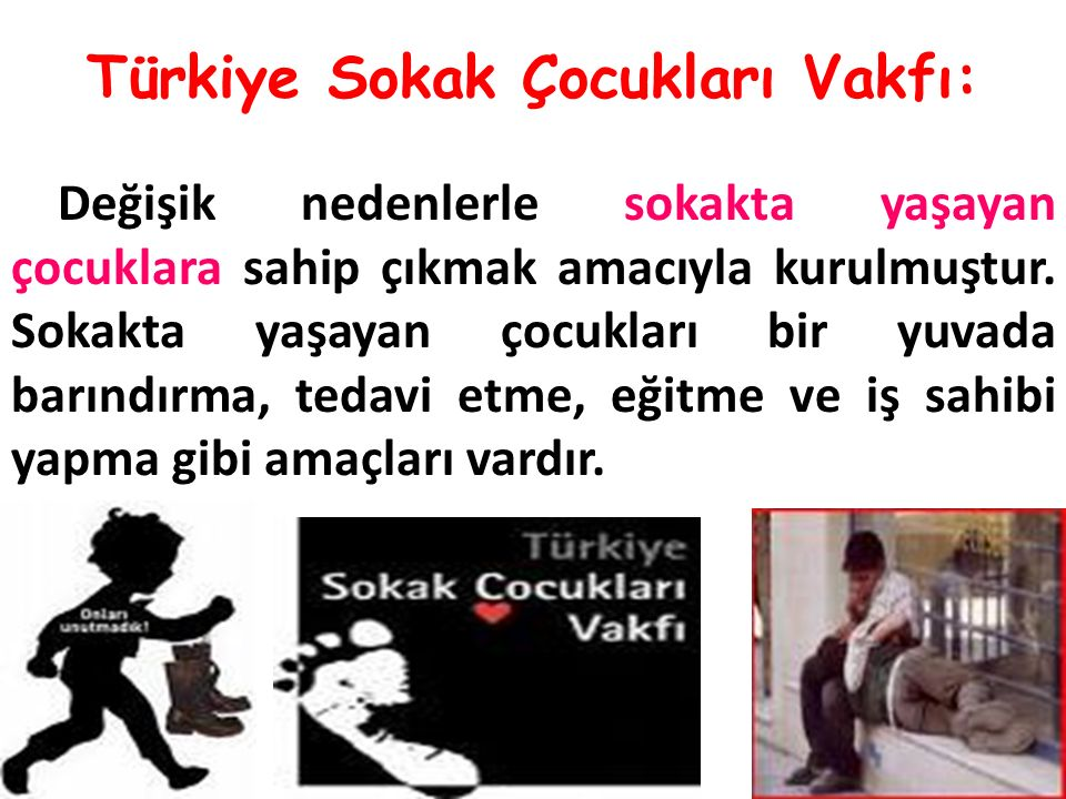 Türkiye Sokak Çocukları Vakfı: Değişik nedenlerle sokakta yaşayan çocuklara sahip çıkmak amacıyla kurulmuştur.
