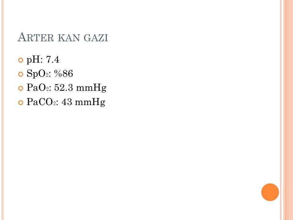 A RTER KAN GAZI pH: 7.4 SpO 2 : %86 PaO 2 : 52.3 mmHg PaCO 2 : 43 mmHg