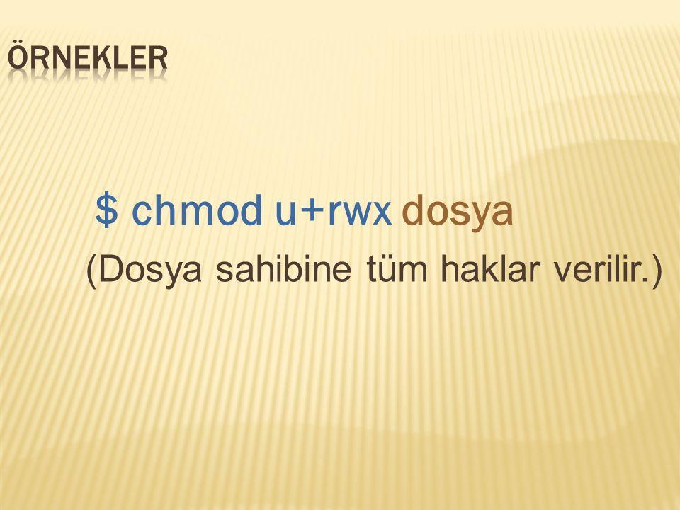 $ chmod u+rwx dosya (Dosya sahibine tüm haklar verilir.)