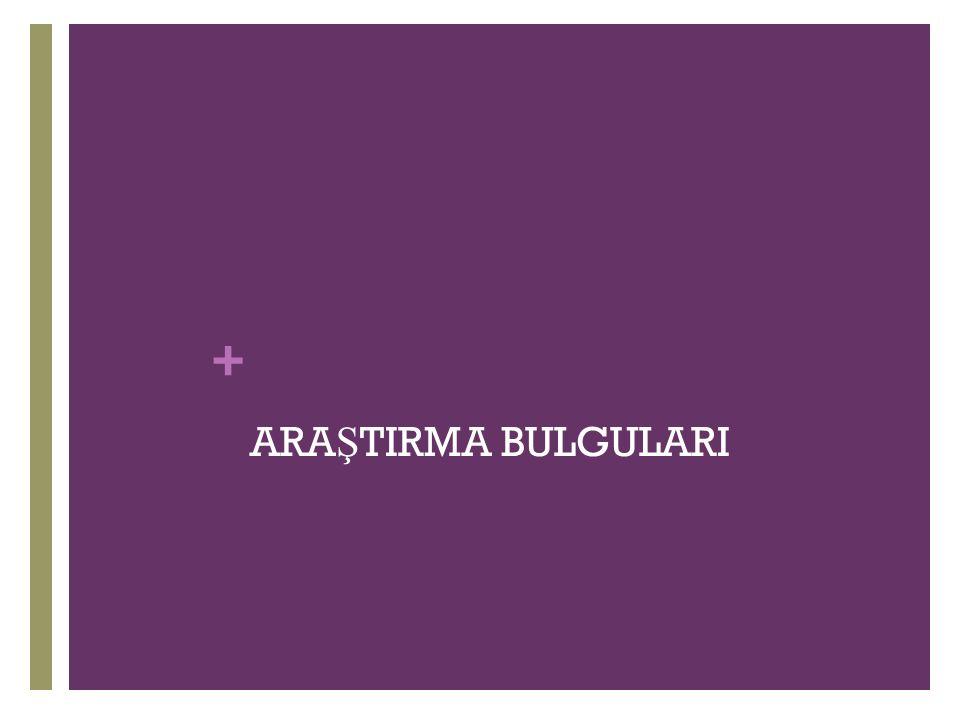 + ARA Ş TIRMA BULGULARI