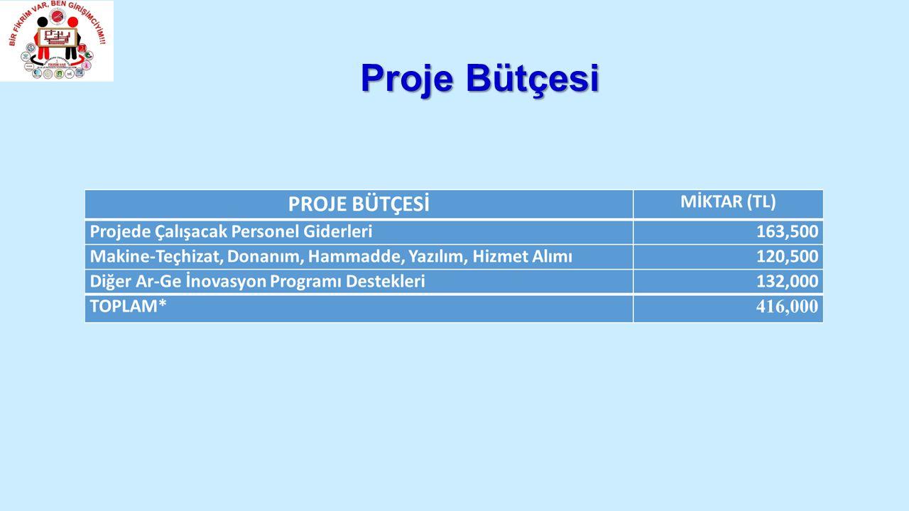 Proje Bütçesi
