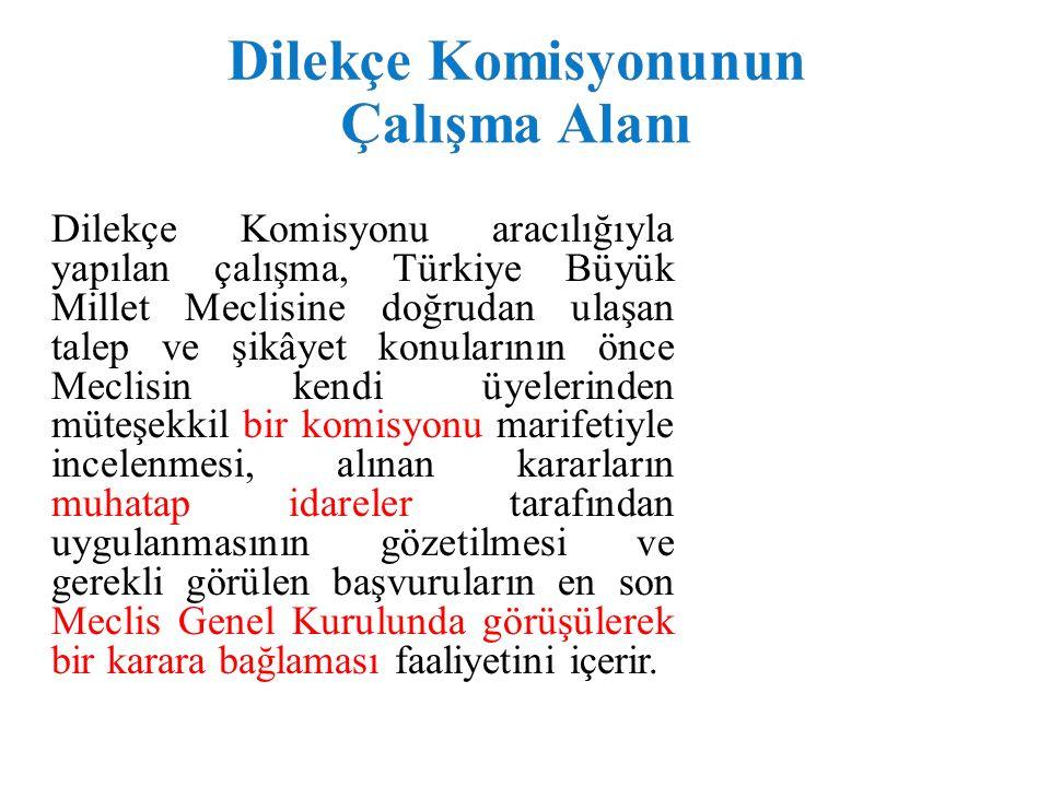 Dilekçe Komisyonu aracılığıyla yapılan çalışma, Türkiye Büyük Millet Meclisine doğrudan ulaşan talep ve şikâyet konularının önce Meclisin kendi üyelerinden müteşekkil bir komisyonu marifetiyle incelenmesi, alınan kararların muhatap idareler tarafından uygulanmasının gözetilmesi ve gerekli görülen başvuruların en son Meclis Genel Kurulunda görüşülerek bir karara bağlaması faaliyetini içerir.