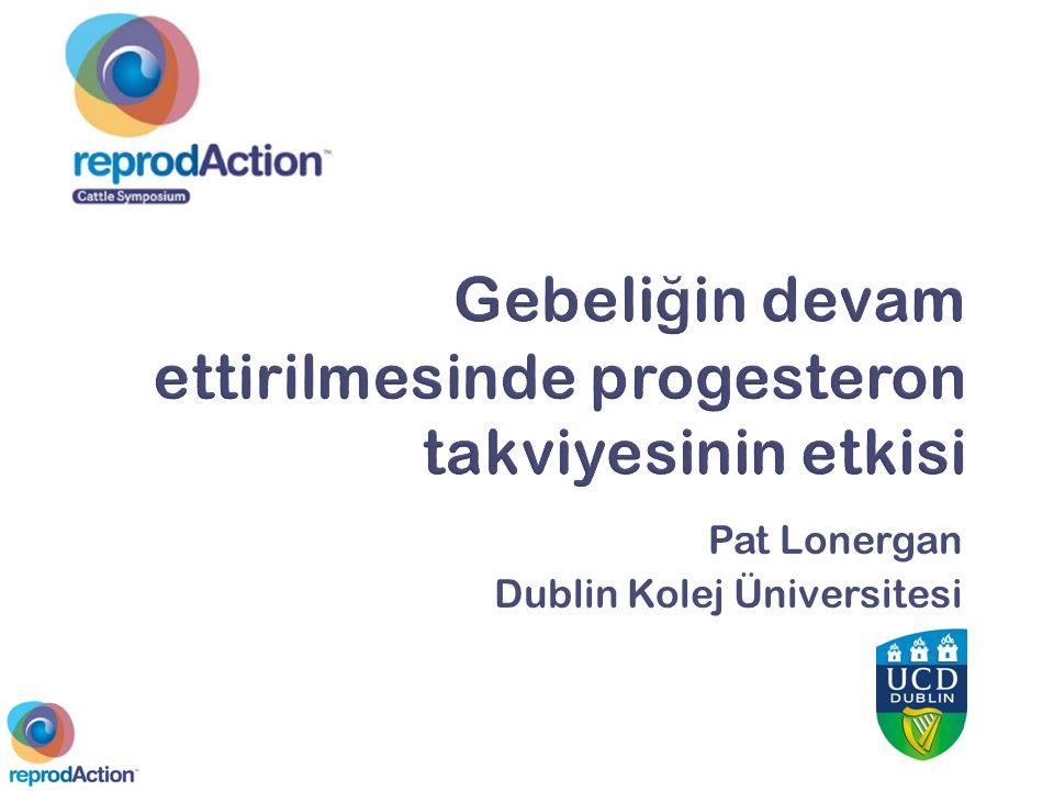 Pat Lonergan Dublin Kolej Üniversitesi
