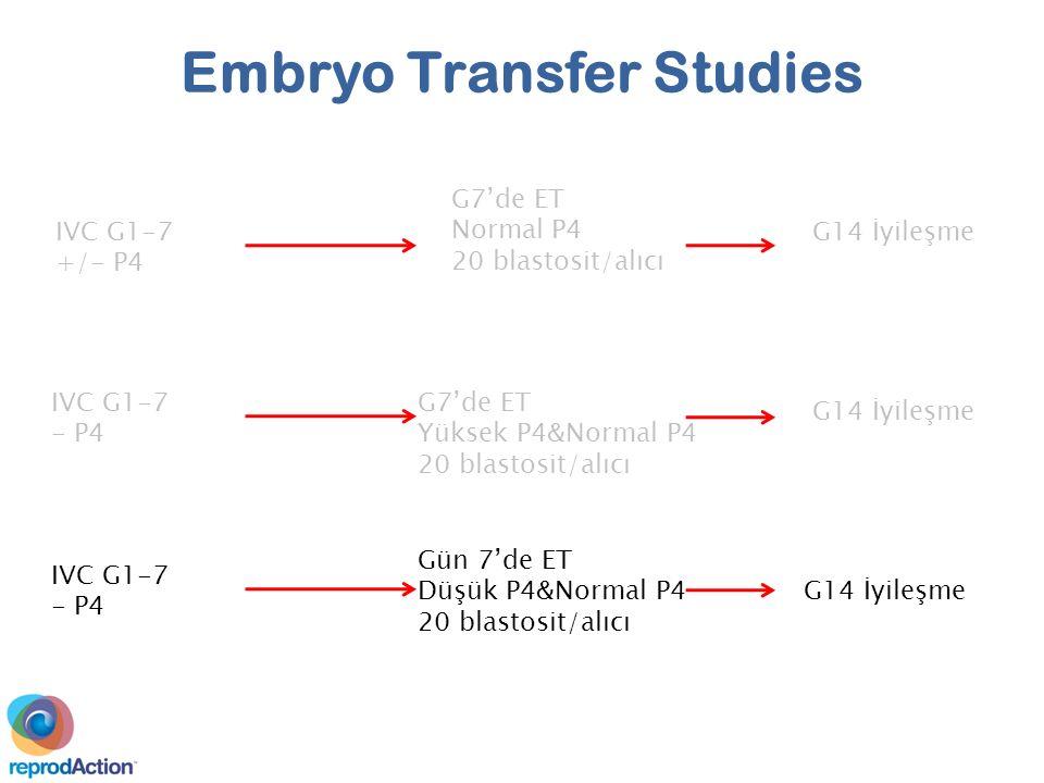 IVC G1-7 +/- P4 G7'de ET Normal P4 20 blastosit/alıcı G14 İyileşme IVC G1-7 - P4 G7'de ET Yüksek P4&Normal P4 20 blastosit/alıcı IVC G1-7 - P4 Embryo Transfer Studies G14 İyileşme Gün 7'de ET Düşük P4&Normal P4 20 blastosit/alıcı G14 İyileşme