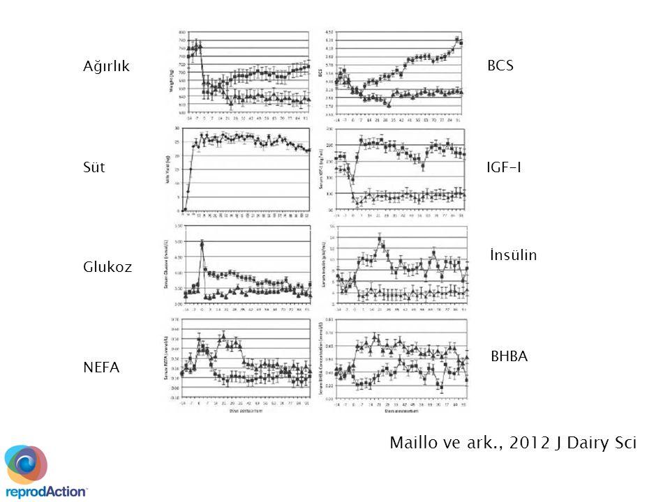 Ağırlık Glukoz Süt NEFA BCS IGF-I İnsülin BHBA