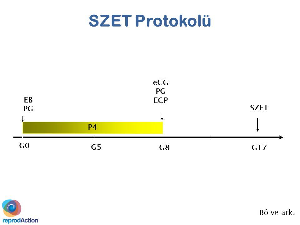 P4 EB PG G0G0 G8G8 G17 SZET G5G5 eCG PG ECP Bó ve ark. SZET Protokolü