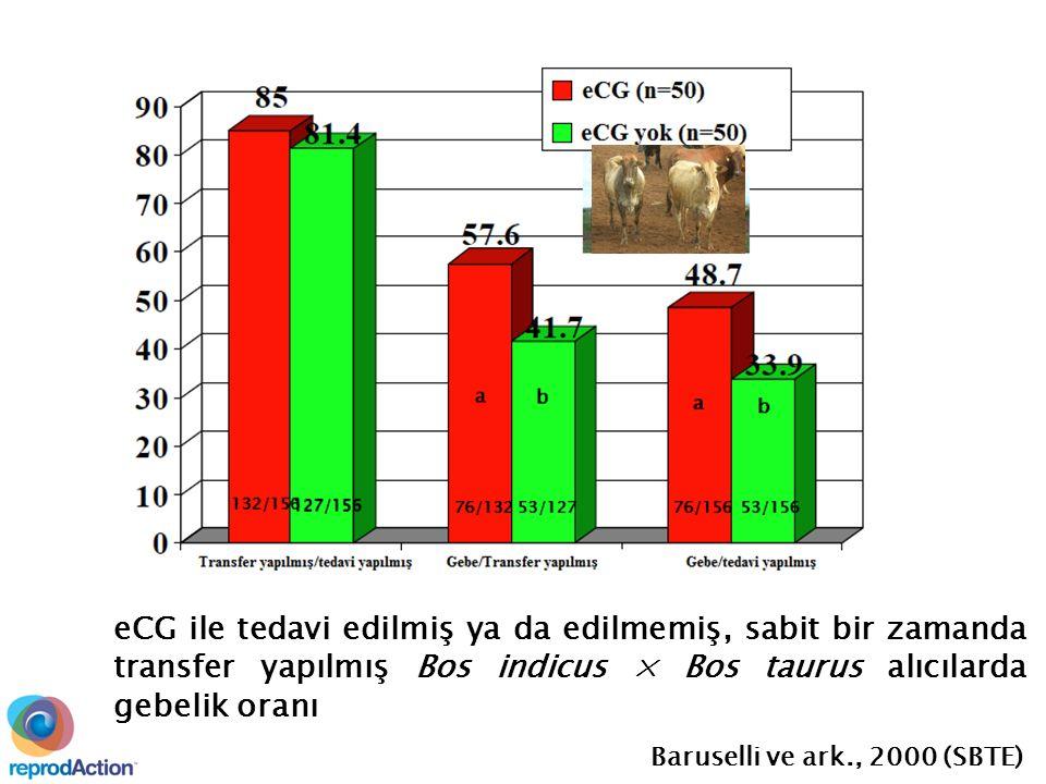 eCG ile tedavi edilmiş ya da edilmemiş, sabit bir zamanda transfer yapılmış Bos indicus × Bos taurus alıcılarda gebelik oranı Baruselli ve ark., 2000 (SBTE)