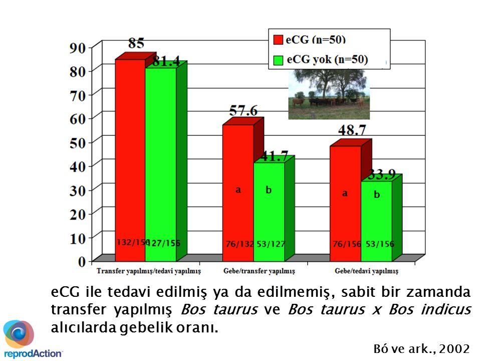 eCG ile tedavi edilmiş ya da edilmemiş, sabit bir zamanda transfer yapılmış Bos taurus ve Bos taurus x Bos indicus alıcılarda gebelik oranı.