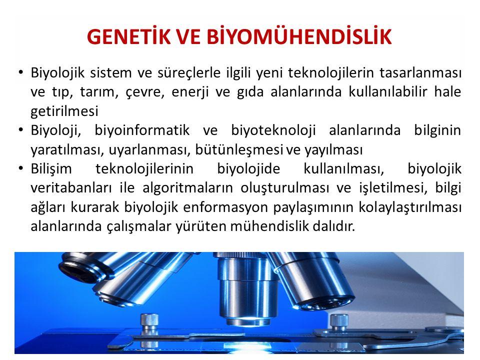 GENETİK VE BİYOMÜHENDİSLİK Biyolojik sistem ve süreçlerle ilgili yeni teknolojilerin tasarlanması ve tıp, tarım, çevre, enerji ve gıda alanlarında kul