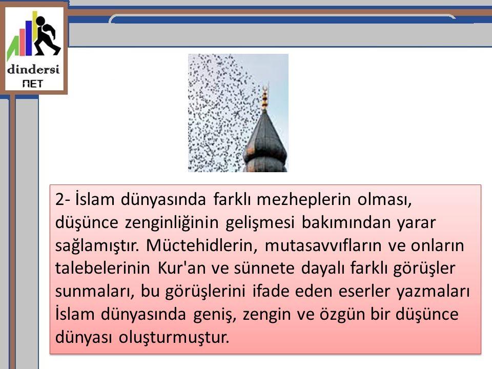 2- İslam dünyasında farklı mezheplerin olması, düşünce zenginliğinin gelişmesi bakımından yarar sağlamıştır. Müctehidlerin, mutasavvıfların ve onların