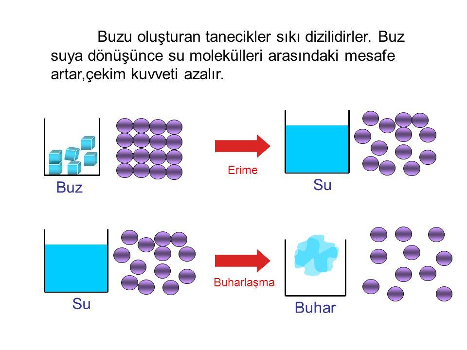 Buzu oluşturan tanecikler sıkı dizilidirler. Buz suya dönüşünce su molekülleri arasındaki mesafe artar,çekim kuvveti azalır. Erime Buharlaşma Buz Su B