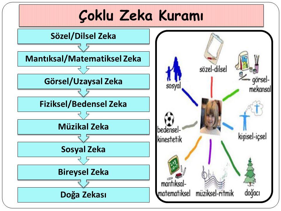 Çoklu Zeka Kuramı Doğa Zekası Bireysel Zeka Sosyal Zeka Müzikal Zeka Fiziksel/Bedensel Zeka Görsel/Uzaysal Zeka Mantıksal/Matematiksel Zeka Sözel/Dilsel Zeka