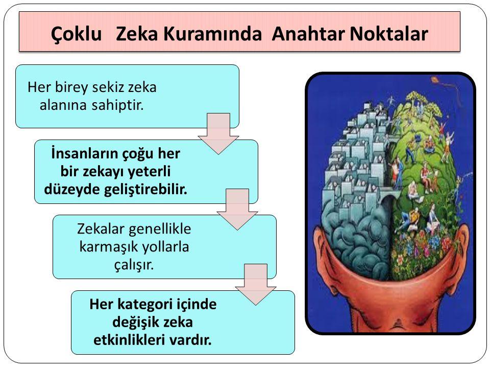 Çoklu Zeka Kuramında Anahtar Noktalar Her birey sekiz zeka alanına sahiptir.
