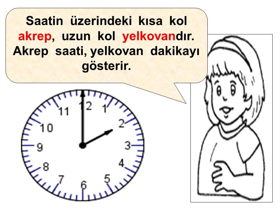 Saatin üzerindeki kısa kol akrep, uzun kol yelkovandır. Akrep saati, yelkovan dakikayı gösterir.