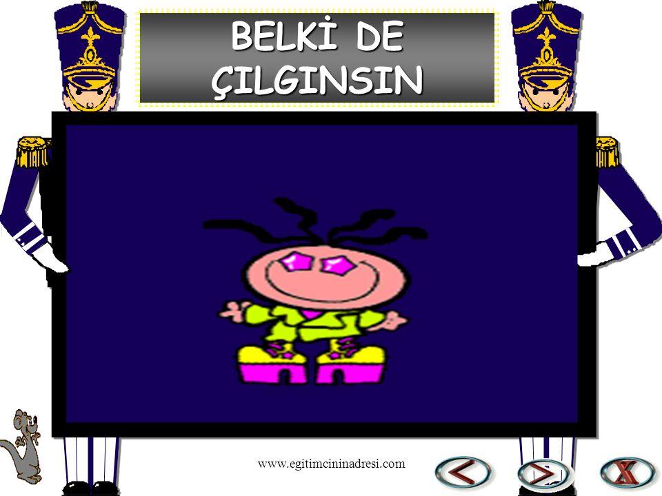 BELKİ DE ÇILGINSIN www.egitimcininadresi.com