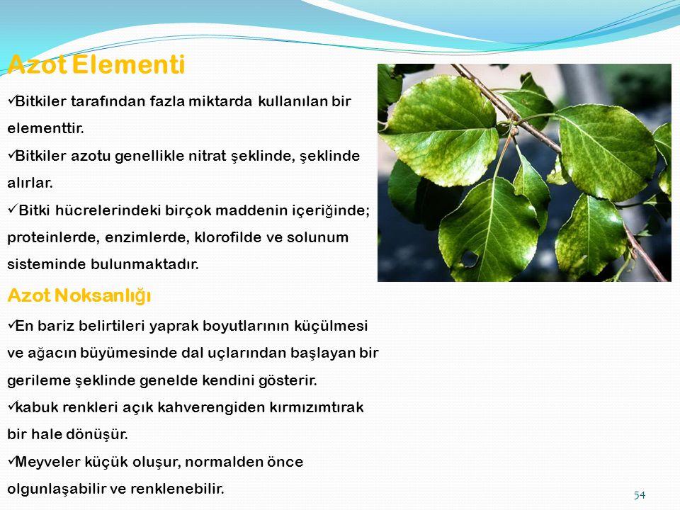 54 Azot Elementi Bitkiler tarafından fazla miktarda kullanılan bir elementtir.