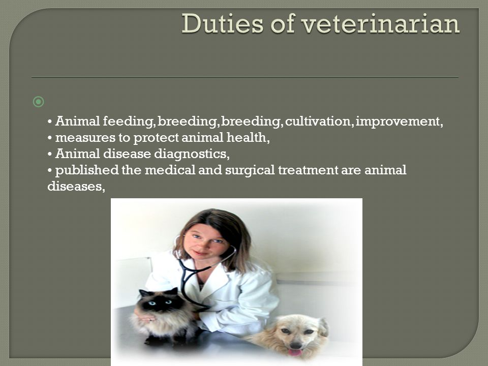  Animal feeding, breeding, breeding, cultivation, improvement, measures to protect animal health, Animal disease diagnostics, published the medical and surgical treatment are animal diseases, www.hayalkatibi.com