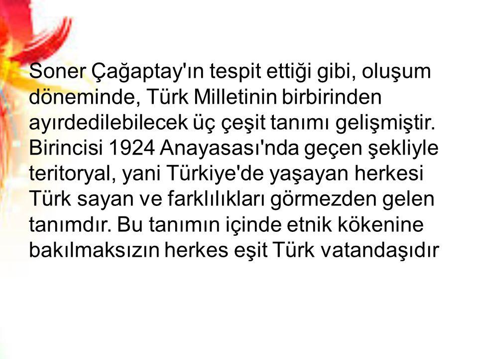 Soner Çağaptay'ın tespit ettiği gibi, oluşum döneminde, Türk Milletinin birbirinden ayırdedilebilecek üç çeşit tanımı gelişmiştir. Birincisi 1924 Anay