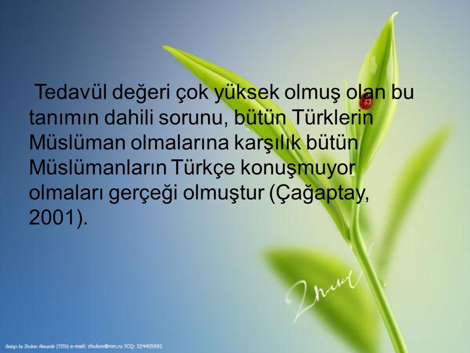 Tedavül değeri çok yüksek olmuş olan bu tanımın dahili sorunu, bütün Türklerin Müslüman olmalarına karşılık bütün Müslümanların Türkçe konuşmuyor olma