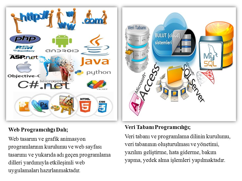 Web Programcılığı Dalı; Web tasarım ve grafik animasyon programlarının kurulumu ve web sayfası tasarımı ve yukarıda adı geçen programlama dilleri yardımıyla etkileşimli web uygulamaları hazırlanmaktadır.