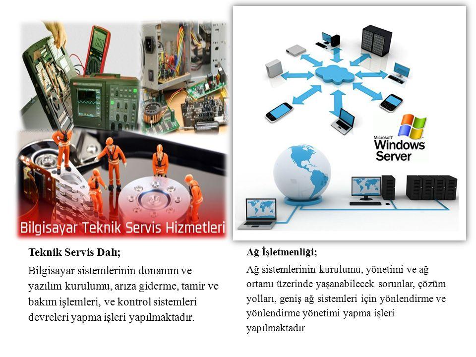 Teknik Servis Dalı; Bilgisayar sistemlerinin donanım ve yazılım kurulumu, arıza giderme, tamir ve bakım işlemleri, ve kontrol sistemleri devreleri yapma işleri yapılmaktadır.