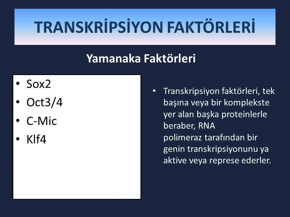 TRANSKRİPSİYON FAKTÖRLERİ Yamanaka Faktörleri Sox2 Oct3/4 C-Mic Klf4 Transkripsiyon faktörleri, tek başına veya bir komplekste yer alan başka proteinl